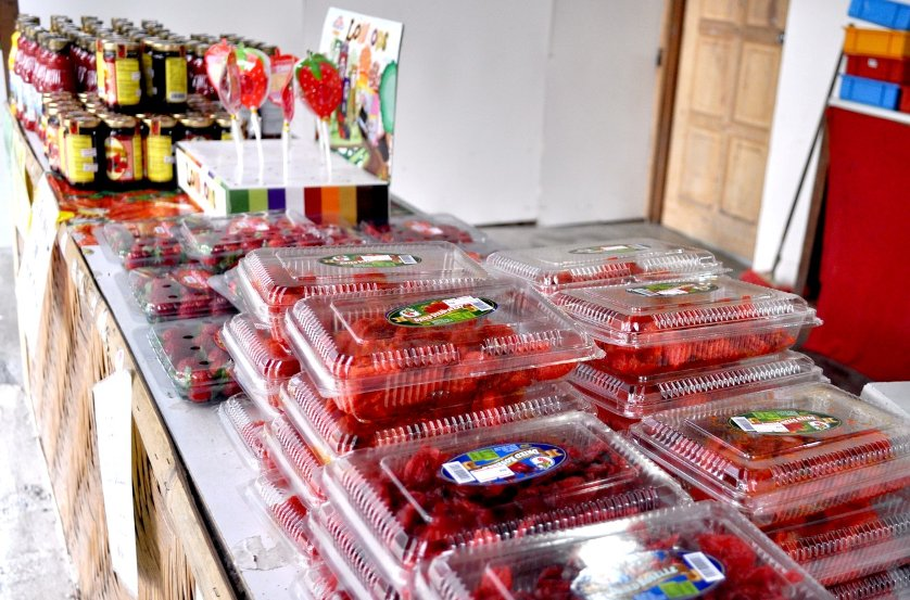 Strawberries & other fresh products